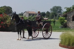 ferrin-carrozze-1