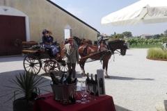 ferrin-carrozze-3